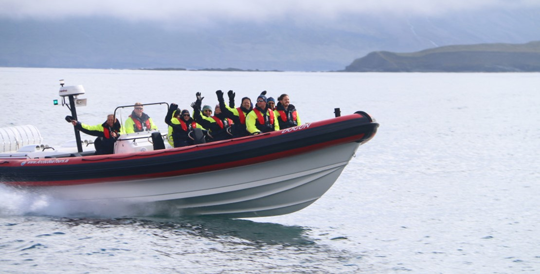 The new Rhib boat for whale watching