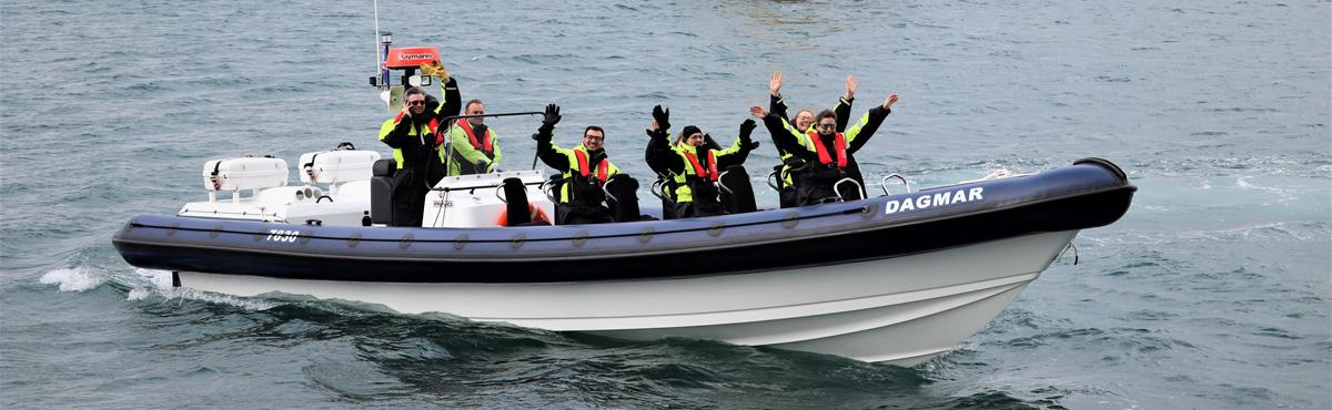 Excursions en bateau en Islande | Arctic Sea Tours