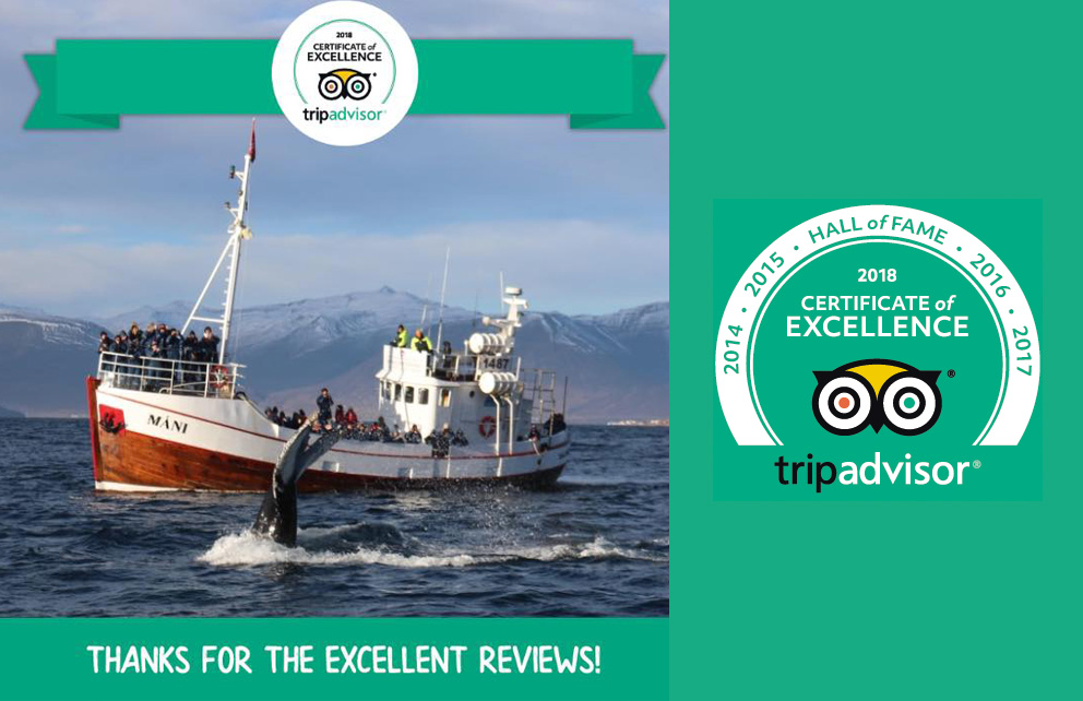 2018 Certificate of Excellence from TripAdvisor | Arctic Sea Tours