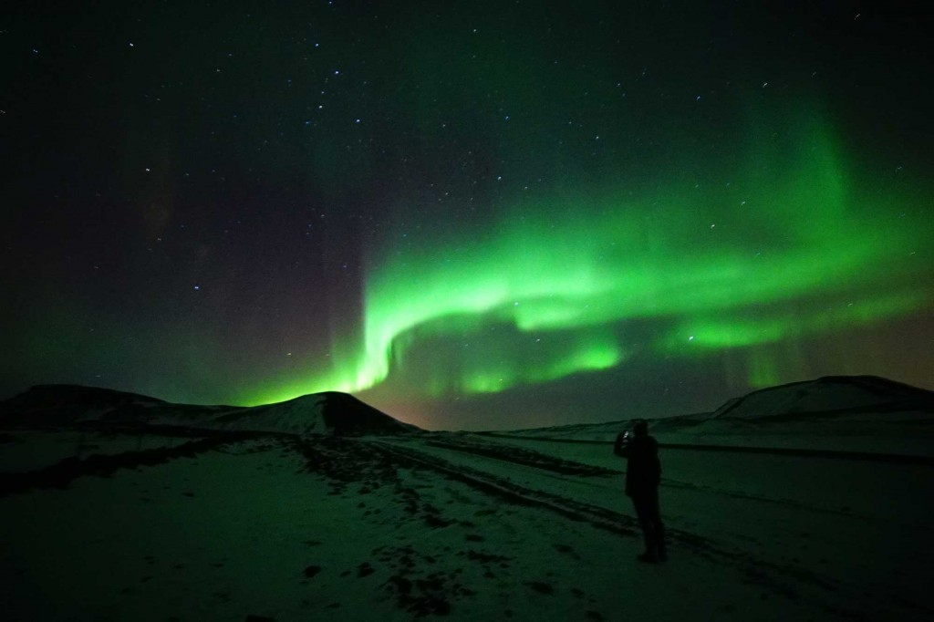 Whale Watching & Northern Lights Tour | From Reykjavik | Arctic Sea Tours