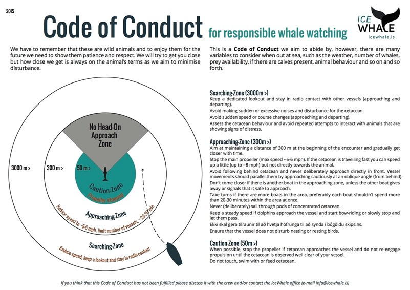 Code of conduct for responsible whale watching